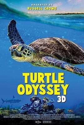 海龟漂流记